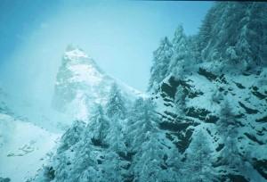 Un inverno nevoso!